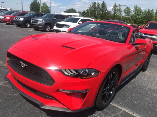 Pre Owned 2019 Ford Mustang Ecoboost Rwd 2d Convertible